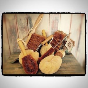 Eco Max Natural Brushes - From $6.00